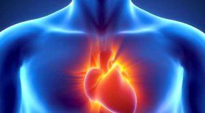 005443600_1436329879-heart-healing-exosomes